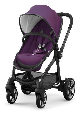 Kiddy Evostar 1 цвет Royal Purple